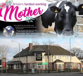 11.03.2018 Britains hardest Working Mother, doordropping
