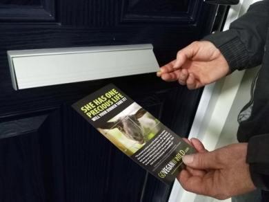 23.03.2017 Go Vegan door dropping